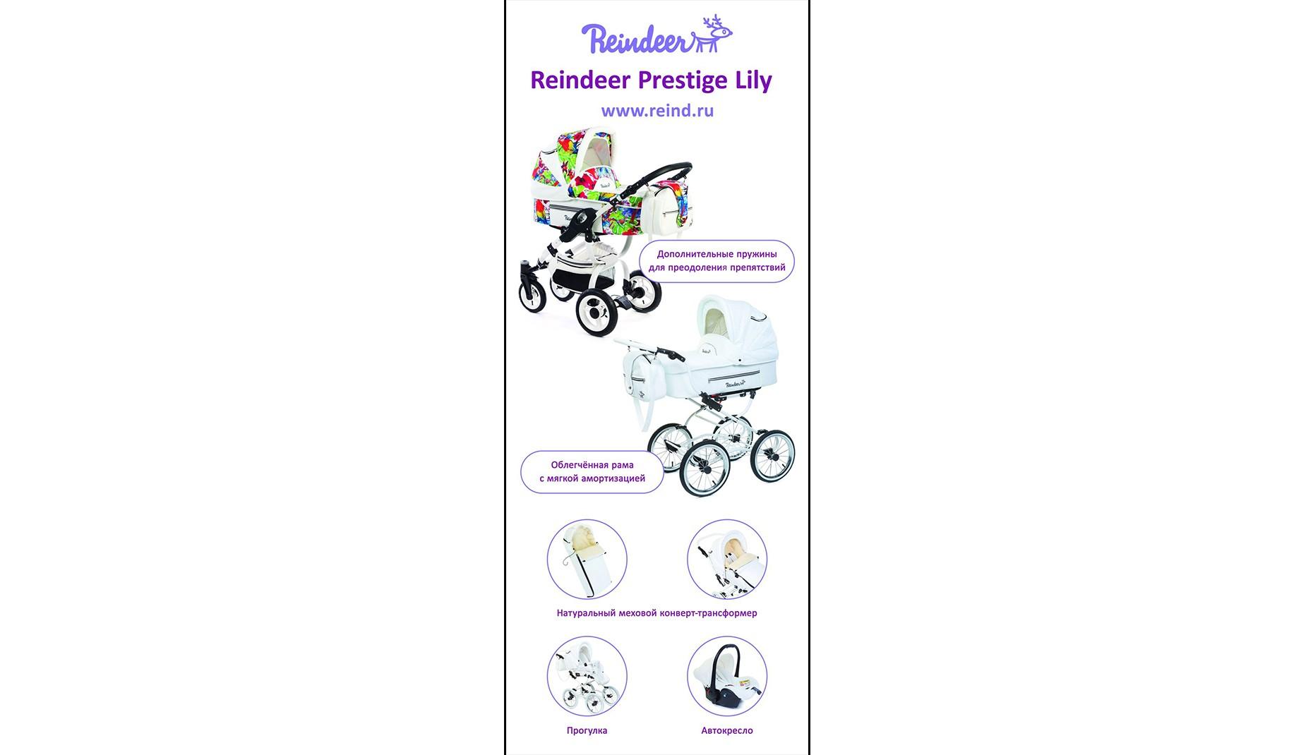 Баннер Reindeer Lily 200х80
